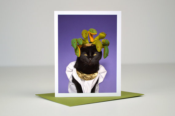AC is Medusa Greeting Card :: Kate Funk
